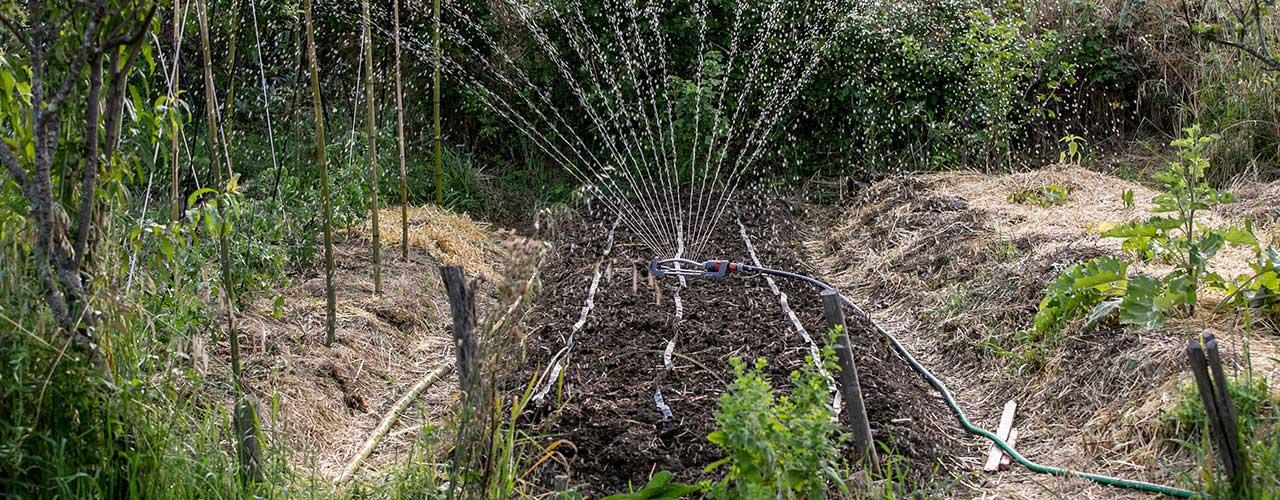 Comprendre et installer un arrosage automatique aux jardins potagers