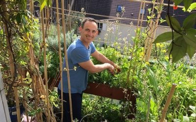 Faire son potager-balcon en permaculture ! Interview d'Hervé Chabert