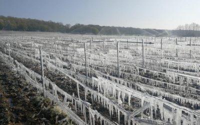 L'agroécologie face aux évènements météorologiques extrêmes