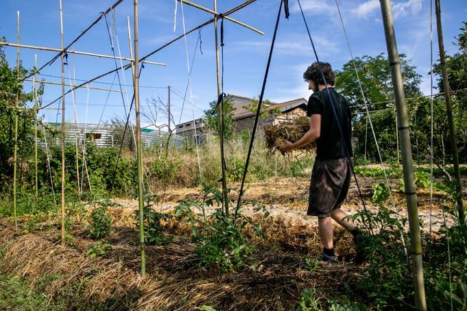 FORMATION EN AGROÉCOLOGIE